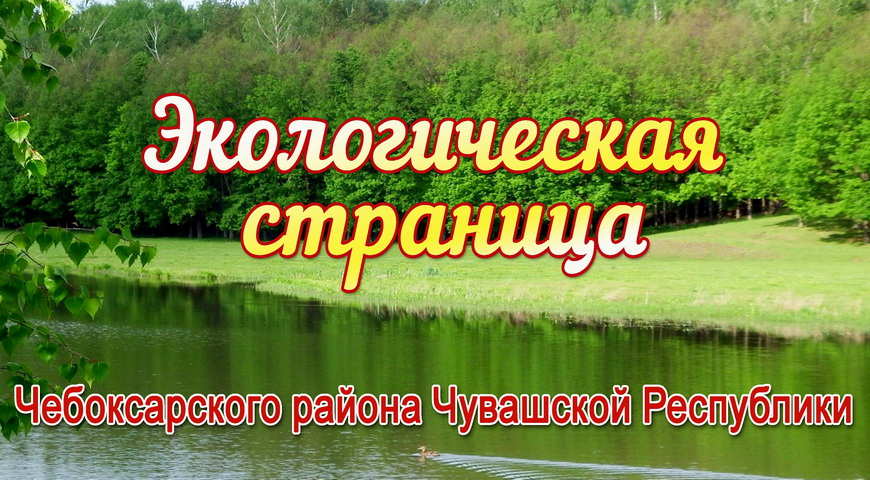 title_607eacc7d221c6235233191618914503