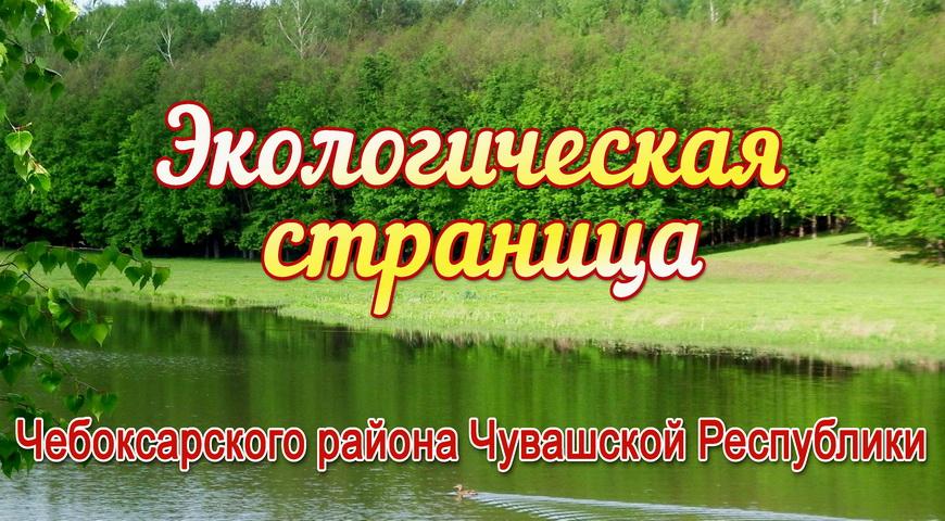 title_5f761acc43fd913651902321601575628